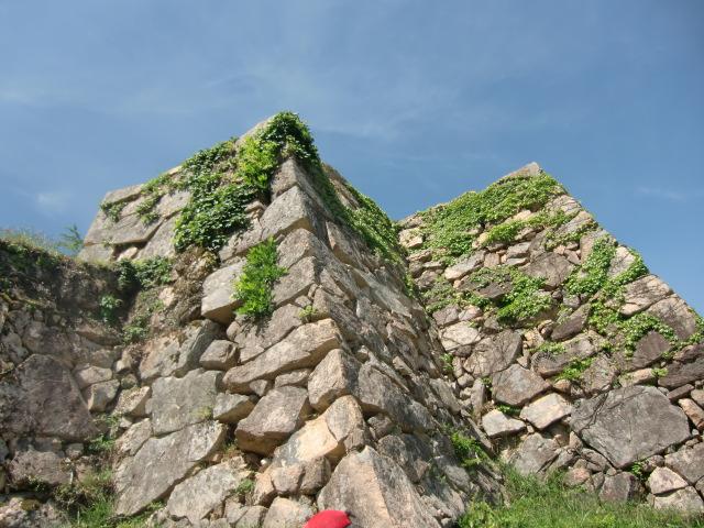 竹田城跡と宇喜多家の姫_d0179392_1131893.jpg