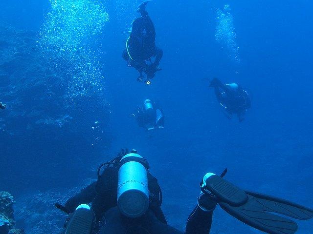 2013年6月西表島ダイビング 3日目昼 196~198本_c0118393_18303068.jpg