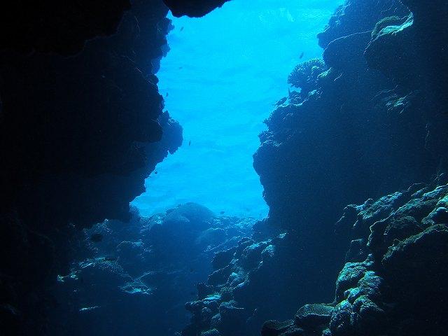 2013年6月西表島ダイビング 3日目昼 196~198本_c0118393_1831575.jpg