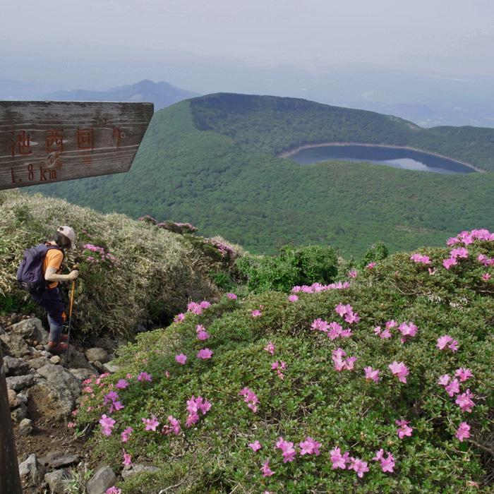 6月7日 韓国岳(Karakunidake) 後半_c0049299_15133062.jpg
