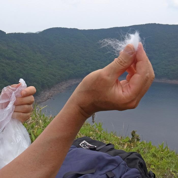6月7日 韓国岳(Karakunidake) 後半_c0049299_1531317.jpg