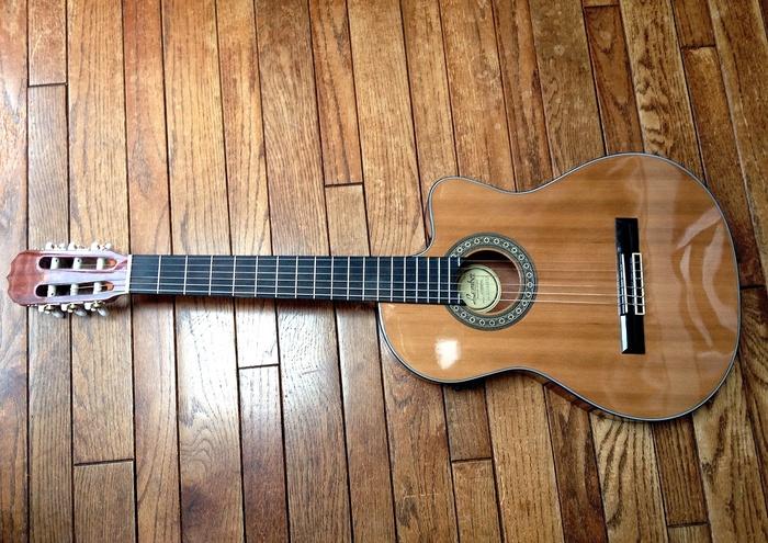 エレガットギター_d0202319_221297.jpg
