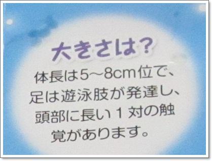 b0149071_1505878.jpg