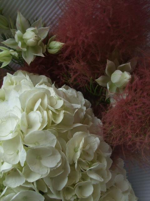 オークリーフ(紅いスモークツリーと白い紫陽花の花束)_f0049672_14291976.jpg