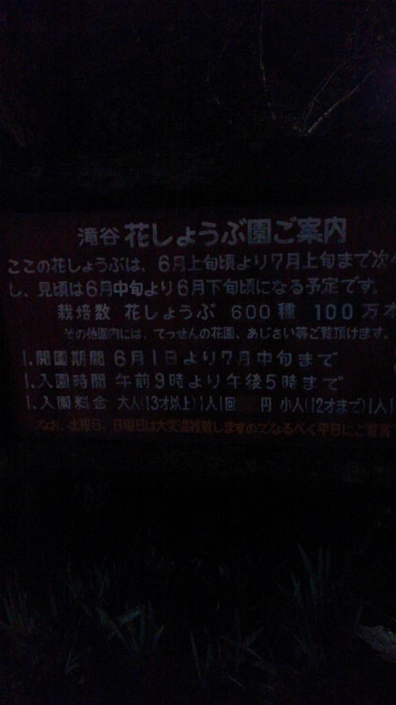 b0100489_852044.jpg