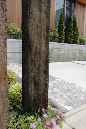 長期優良&そよ風「市川の家」植栽と割栗石を使ったアプローチ_f0170331_16582848.jpg