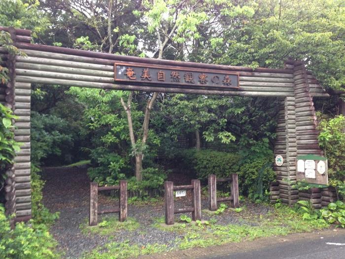 奄美大島~2013.06_b0148352_8362115.jpg