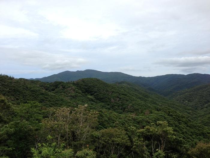 奄美大島~2013.06_b0148352_91152.jpg
