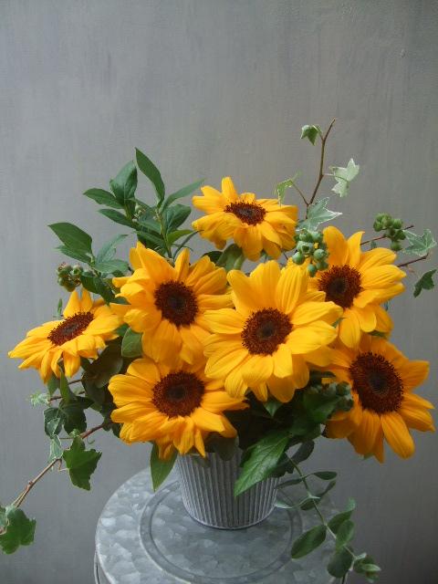 オークリーフ(父の日に贈る花)_f0049672_12333587.jpg