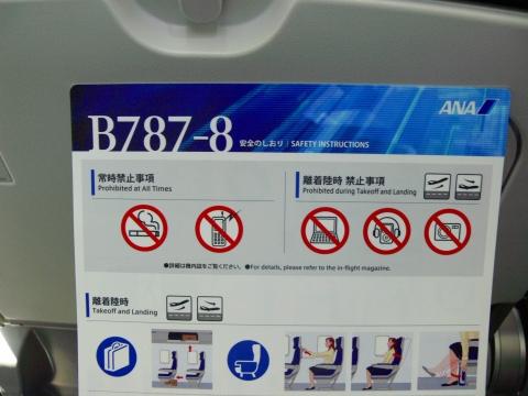 亜細亜出張2013年06月-第一、二日目-B-787の旅_c0153302_18513476.jpg