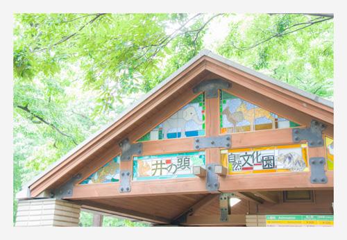 会いたかったのです〜井の頭公園〜_b0127032_1781877.jpg
