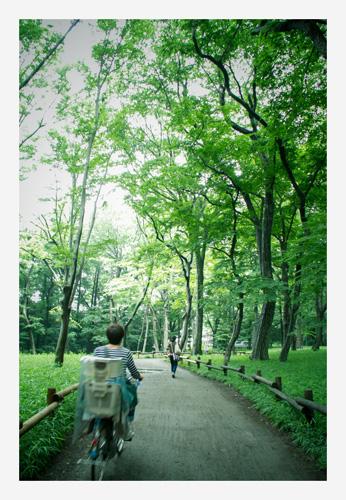 会いたかったのです〜井の頭公園〜_b0127032_1795475.jpg