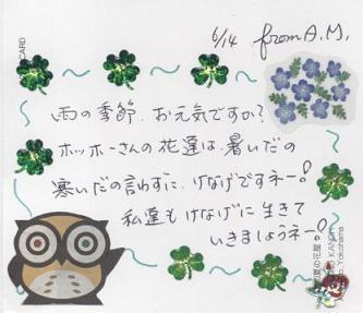 花便り_f0139963_7215589.jpg
