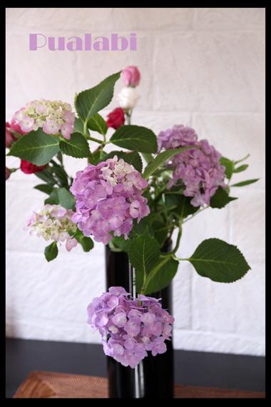 d0218074_16373359.jpg
