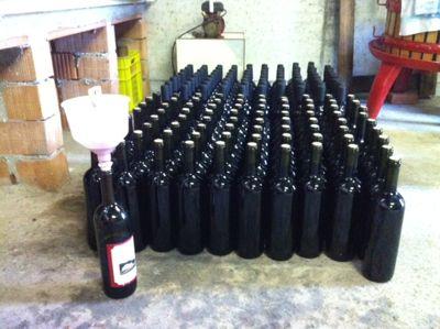 ラベンダーの朝とワインの夕べ_d0136540_445457.jpg