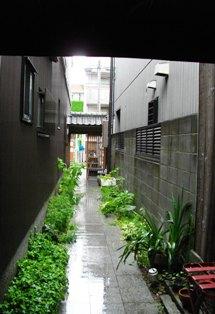 雨宿り_e0230141_1246517.jpg