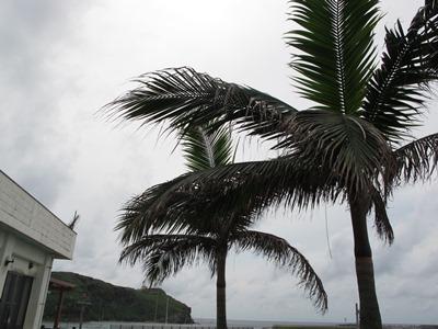 6月20日 台風?_b0158746_1620959.jpg