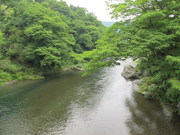 澤乃井 櫛かんざし美術館_e0271858_9183414.jpg