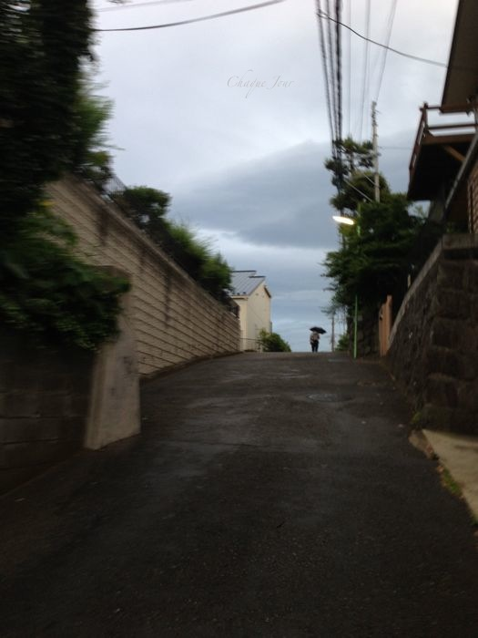 散歩嫌い_d0266681_0101423.jpg