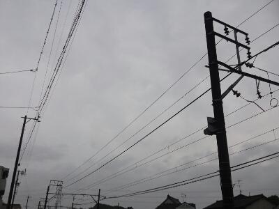 ハムヲさんの朝ラン日記  (2013/6/21)_a0260034_6451179.jpg