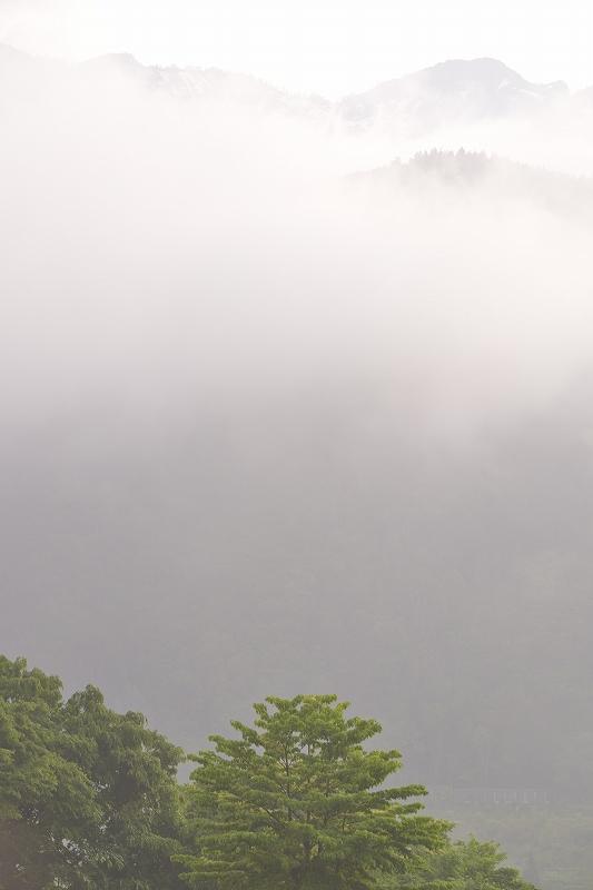 初夏の白川郷_f0050534_16492983.jpg