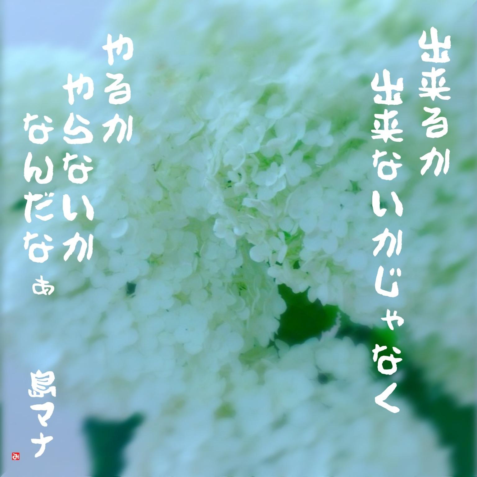 f0183846_1941551.jpg