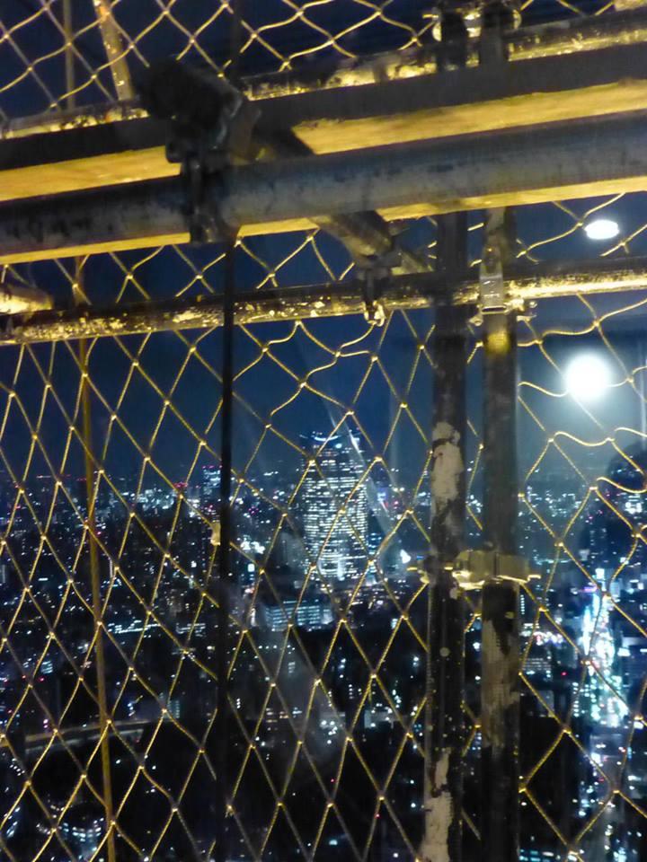 初めての・・・東京タワー?_c0100865_6301815.jpg