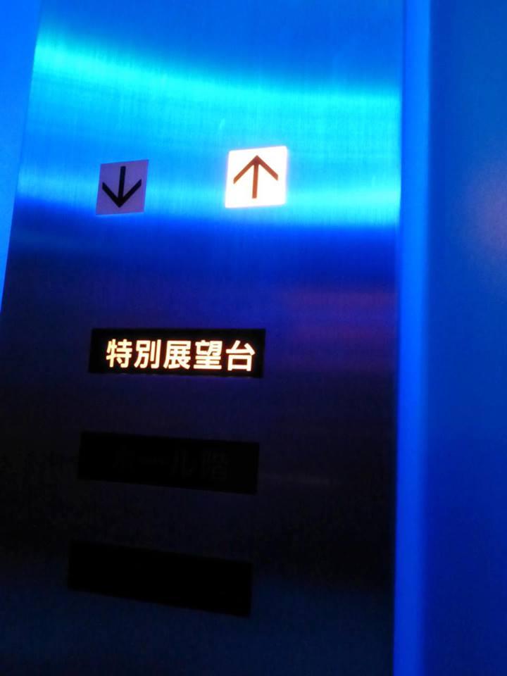 初めての・・・東京タワー?_c0100865_6534326.jpg