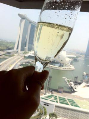 初シンガポール!!_d0156990_23342565.jpg