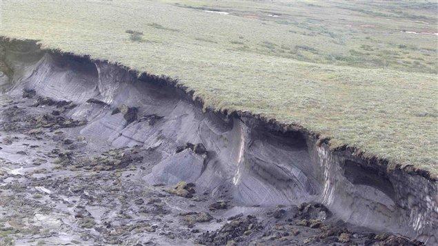 永久凍土の崩壊 : Jの学習