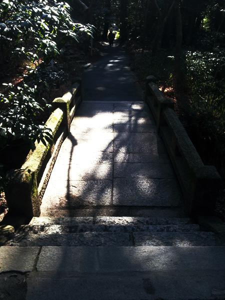 京都洛北修学院 裏路地ゆるトレッキング イベント報告_e0313913_1892938.jpg