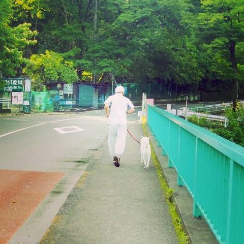 梅雨の晴れ間の散歩道_b0090517_14293687.jpg
