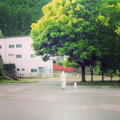 梅雨の晴れ間の散歩道_b0090517_14294051.jpg
