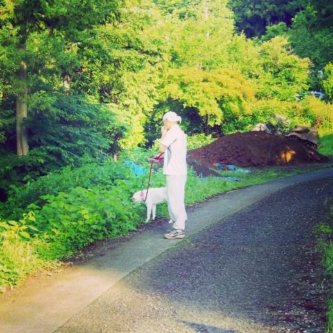 梅雨の晴れ間の散歩道_b0090517_143006.jpg