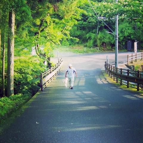 梅雨の晴れ間の散歩道_b0090517_1430127.jpg