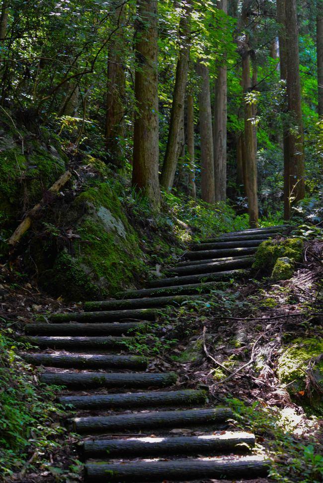 大樽の滝  撮影終えて下山_d0246136_15475143.jpg