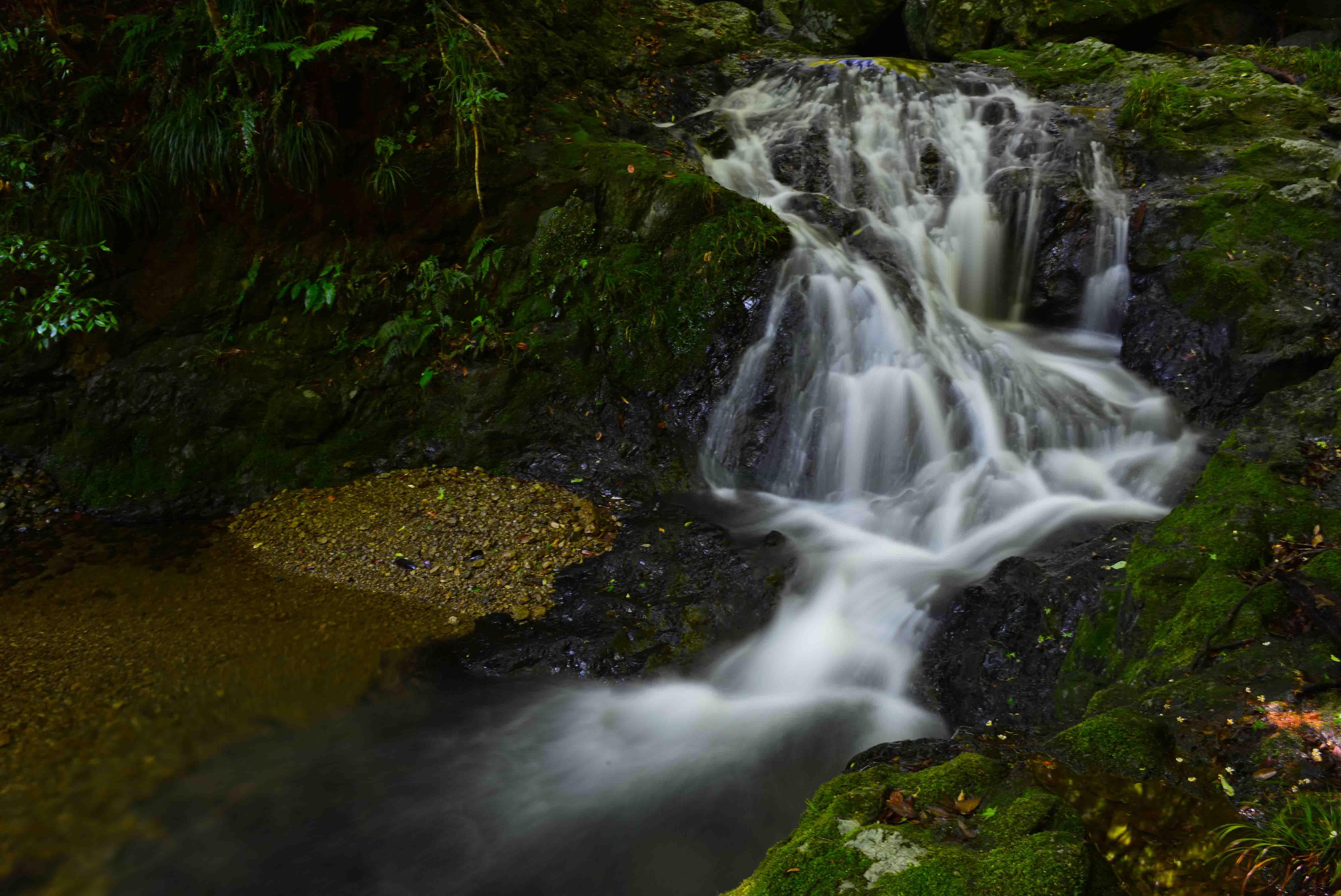 大樽の滝  撮影終えて下山_d0246136_15484061.jpg