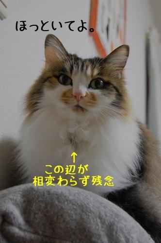 c0181639_2327949.jpg