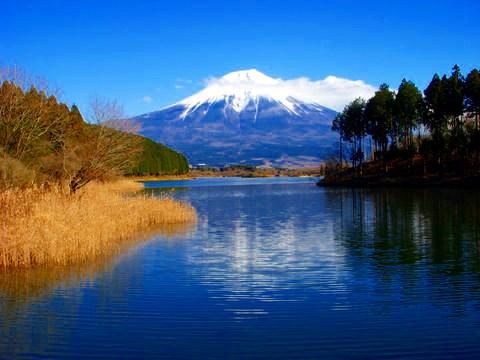 富士のおもひで ~富士山世界遺産登録記念~_d0116009_343294.jpg