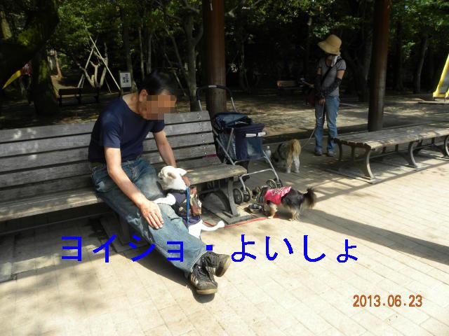 b0203018_16202931.jpg