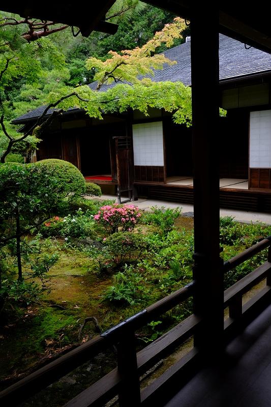 京都でサドンデス_f0050534_21524147.jpg