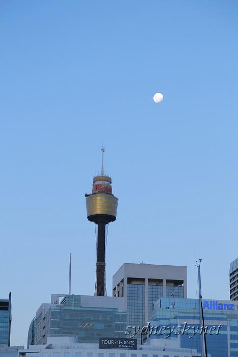 満月の夜_f0084337_20202224.jpg