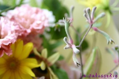 お花が届きました。_d0183440_1751437.jpg