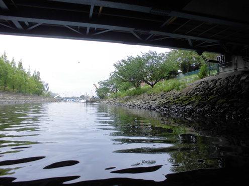 旧中川から葛西左近川へ_c0249569_13563549.jpg