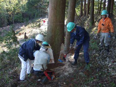 「第10回・環境フェアin島田」開催されます。_c0069972_12591322.jpg