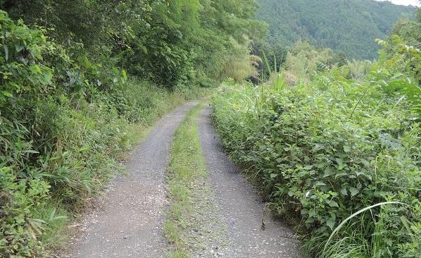 近くの風景_c0243877_9141721.jpg