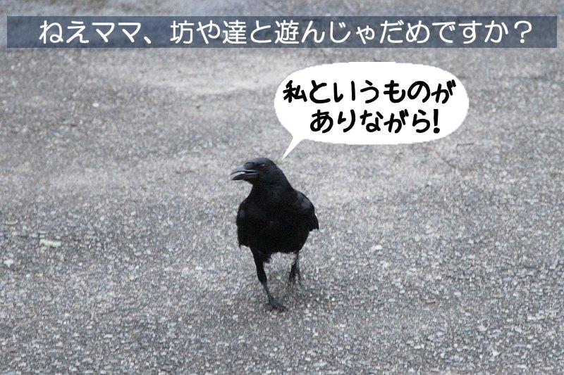 b0174191_0305373.jpg