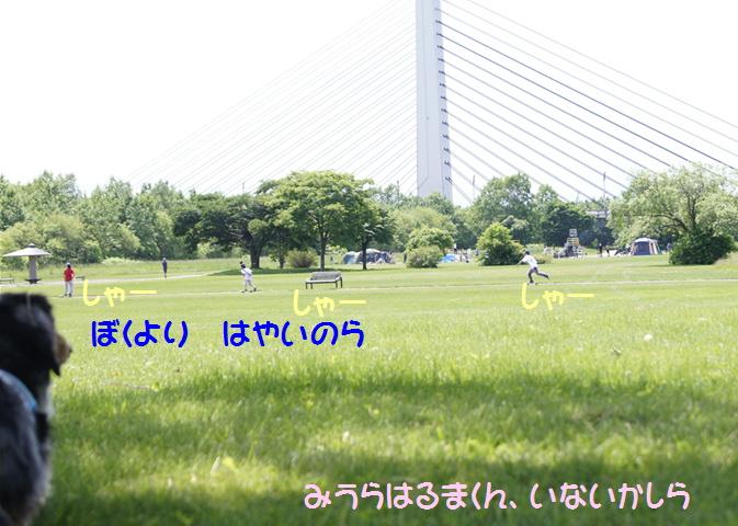 f0195891_18444830.jpg
