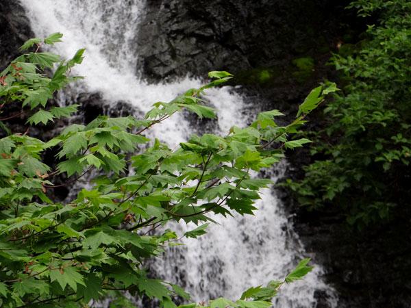 小坂の七滝と側を流れる川、少しの茅葺き民家など_a0136293_14454082.jpg