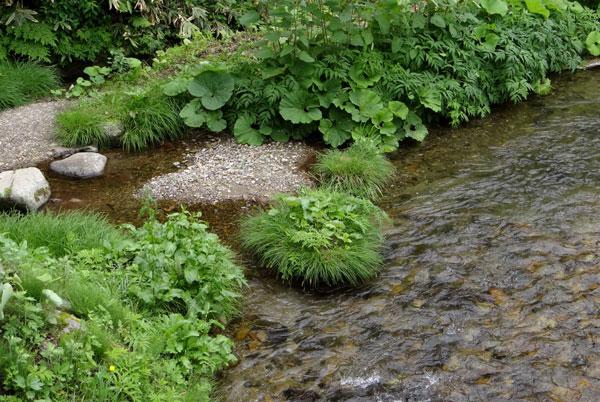 小坂の七滝と側を流れる川、少しの茅葺き民家など_a0136293_14551482.jpg